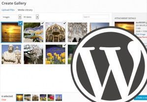 20 Useful WordPress Gallery Plugins