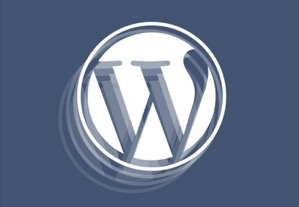 A Quick Guide to the WordPress Customizer Interface