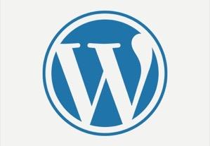 WordPress Widgets to Watch in2017